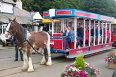 Horse-Tram-1