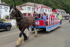 Horse-Tram-9