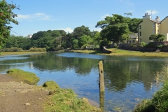 Sulby-River-Ramsey-2