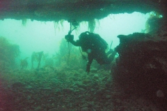 Diving-Isle-of-Man IOM Tourism image