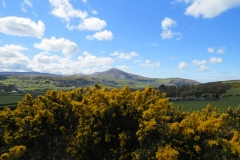 Maughold-7