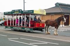 Horse-Tram-7