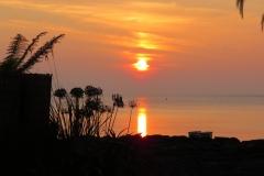 Seafront-garden-sunset-1