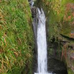 Image of waterfall at Tholt-y-Will glen